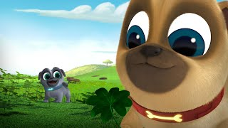 Download The Great Pug-scape / Luck of the Pug-ish Video