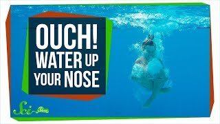 Download Why Does Getting Water Up Your Nose Hurt So Much? Video