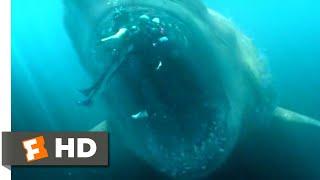 Download The Meg (2018) - Shark Cage vs. Megalodon Scene (5/10)   Movieclips Video