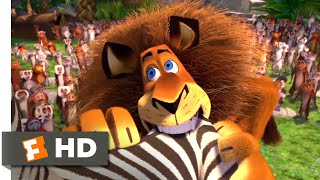 Download Madagascar (2005) - Alex Goes Crazy Scene (7/10) | Movieclips Video