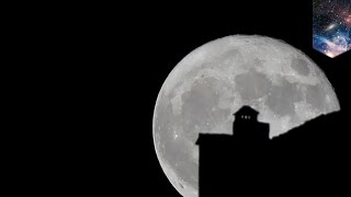 Download Supermoon: biggest moon of the century so far will appear on November 14 - TomoNews Video