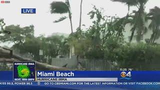 Download Hurricane Irma Moves Through Miami Beach Video