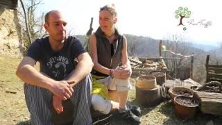 Download Hithit.cz - Banátské lanýže Video