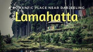 Download A Romantic place near Darjeeling - Lamahatta || Offbeat Destination || Darjeeling || North Bengal Video