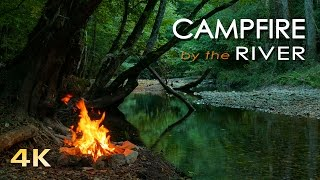 Download 4K Campfire by the River - Relaxing Fireplace & Nature Sounds - Robin Birdsong - UHD Video - 2160p Video