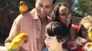 Download Discovery Cove - Promotional Video Video