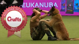 Download Amazing Dog Performs CPR, Squats and Press Ups in Heelwork To Music Routine | Crufts 2017 Video
