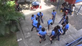 Download La Familia Sapo - CASAYA Video