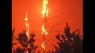 Download WALLS OF FLAME: THE MICHIGAN FOREST FIRES OF 1881 - PART ONE Video