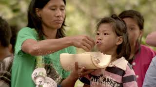 Download We Are What We Eat Video