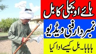 Download Haye O Bjli ka Bill | Numberdar Ka Bjli Ka Bill Zeyda aa gya | نمبرداراور بجلی کا بل Video