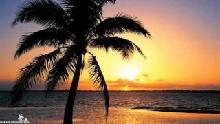 Download Nalin & Kane - Beachball (Extended Vocal Mix) Video