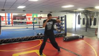 Download The Six Punches of the Boxing Numbering System - Coach King Video