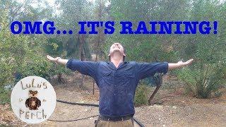 Download Rainwater Harvesting in the Desert   Greening the Desert Video