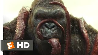 Download Kong: Skull Island (2017) - Kong vs. Giant Squid Scene (3/10) | Movieclips Video