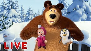 Download Masha and the Bear 🎬💥 LIVE STREAM 💥🎬 All episodes for kids 👶 Cartoon live best episodes Video