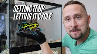 Download Setting up a DART FROG Vivarium Step by Step - Bioactive | Jay Wilson Video