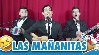 Download Las Mañanitas - Los Tres Tristes Tigres Video
