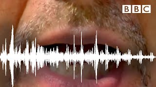 Download Try The McGurk Effect! - Horizon: Is Seeing Believing? - BBC Two Video