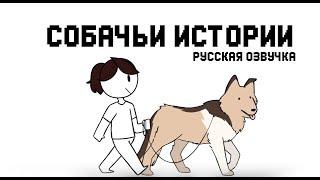 Download Собачьи истории || My Dog Storis Jaiden (rus) Video