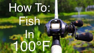 Download How To Catch Fish In 100 Degree Weather!! (Summer edition) Video