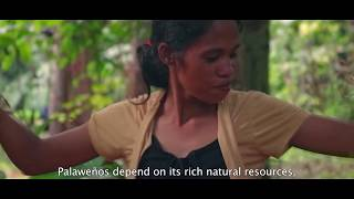 Download Palawan Biosphere Reserve implements Sustainable Development Goals (Philippines) Video