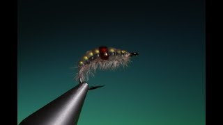 Download Tying the Melt Glue Gammarus with Barry Ord Clarke Video