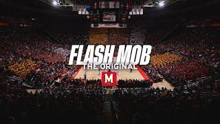 Download Maryland Students Flash Mob I (2013) Video