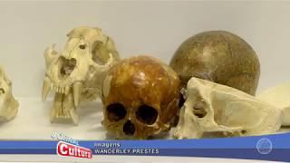 Download Já visitou o Museu de anatomia da UFPA ? Video