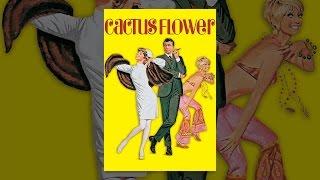 Download Cactus Flower Video