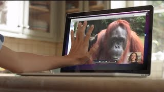 Download AMAZING! Orangutan asks girl for help in sign language Video