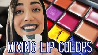 Download Mixing My Own Lip Colors with the Anastasia Beverly Hills Lip Palette Video