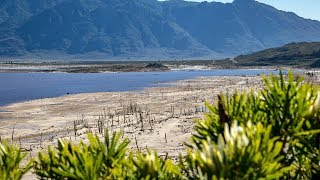Download Rain, rain (never) go away: See how Cape Town's dam levels are rising Video