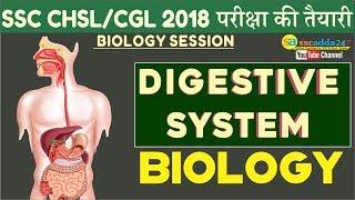Download SSC CHSL, SSC CGL 2018 | Digestive System | Biology | Online Coaching For SSC CGL Video