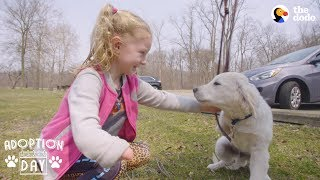 Download Very Special Puppy Gets A Sister Who's Just Like Him - POPCORN | The Dodo Adoption Day Video