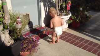 Download Babies Scared of Their Shadow Compilation (2013) Video