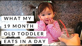 Download WHAT MY 19 MONTH OLD TODDLER EATS IN A DAY | FOOD DIARY Video