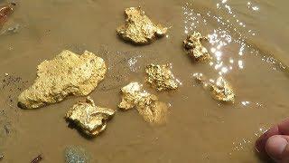 Download Я в шоке! Думаю 5 кг золота, не меньше?! Video