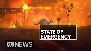 Download NSW Fires: Residents of Malua Bay and Rosedale assess damage | ABC News Video