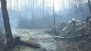 Download Tennessee wildfires turn deadly in Sevier county Video