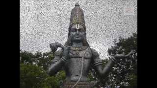 Download Lalanuchu || Annamacharya Keerthanalu || Lord Balaji Telugu Devotional Songs Video