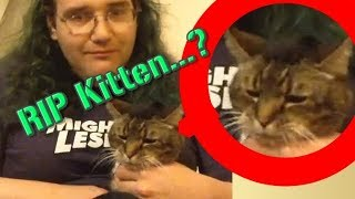 Download Chris Chan Kills His Kitten...or Does He? Video