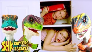 Download Mystery Box FOUND! (UNTAMED RAPTORS ESCAPE!) SuperHeroKids Video