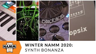 Download NAMM Synth Bonanza: Korg, 2hp, Arturia and More at Winter NAMM 2020 Video