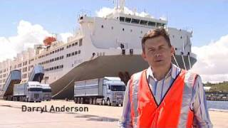 Download Livestock Transport: Take a ship tour onboard MV Becrux Video