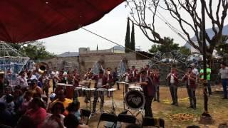 Download Banda Tierra de Venados - Popurri de Sones Video