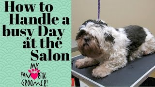 Download How to handle a busy day at the salon Video