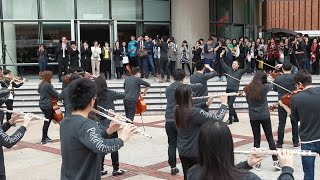 Download The PolyU Orchestra Flash Mob Video