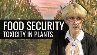 Download Food Security Video