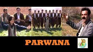 Download Parwana - Kurdish Music Halparke Video